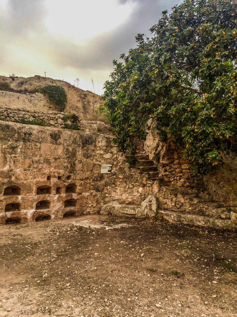 Ancient Roman Apiaries