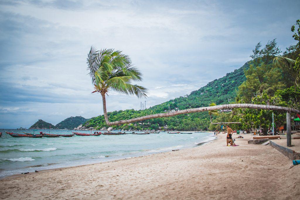 sairee beach koh tao island