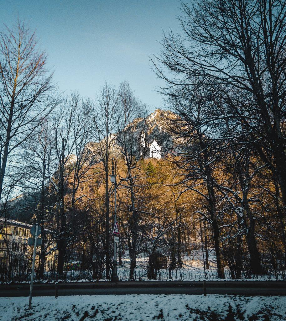 neuschwanstein through the trees below