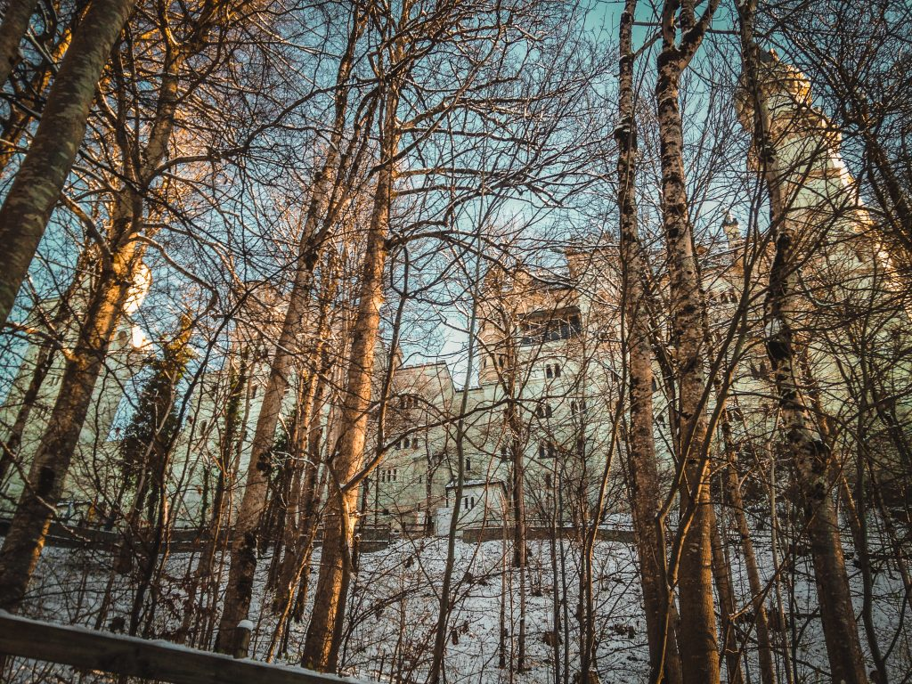neuschwanstein through the trees