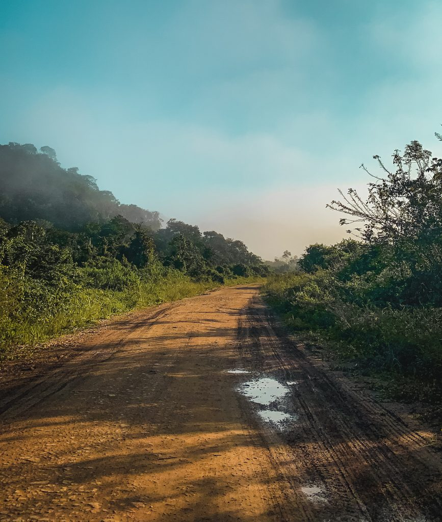 dirt roads with haziness over the trees from being in the rainforest