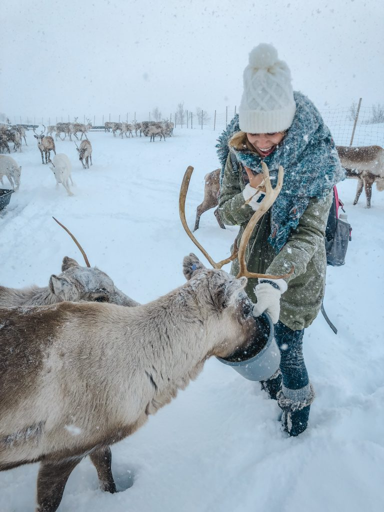 me feeding a reindeer in the snow
